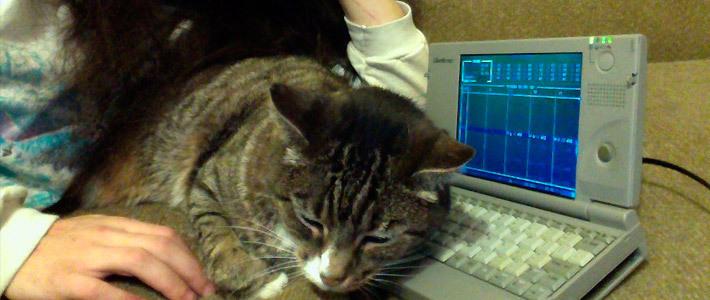 Американец записал электронную музыку с помощью MS-DOS